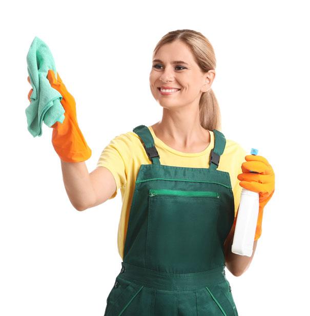 Nettoyage des vitres pour les pros